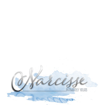 Narcisse-Store-Logo SMALLER ONE