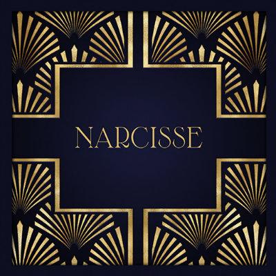 narcisse new logo